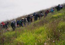 Žićina plaža: Desetorica migranata prelazila preko Drine, dvojica nisu izašla...